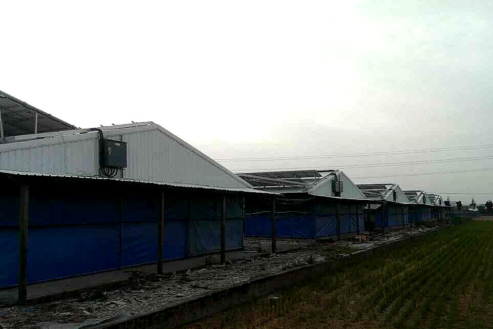 台南柳營350kW
